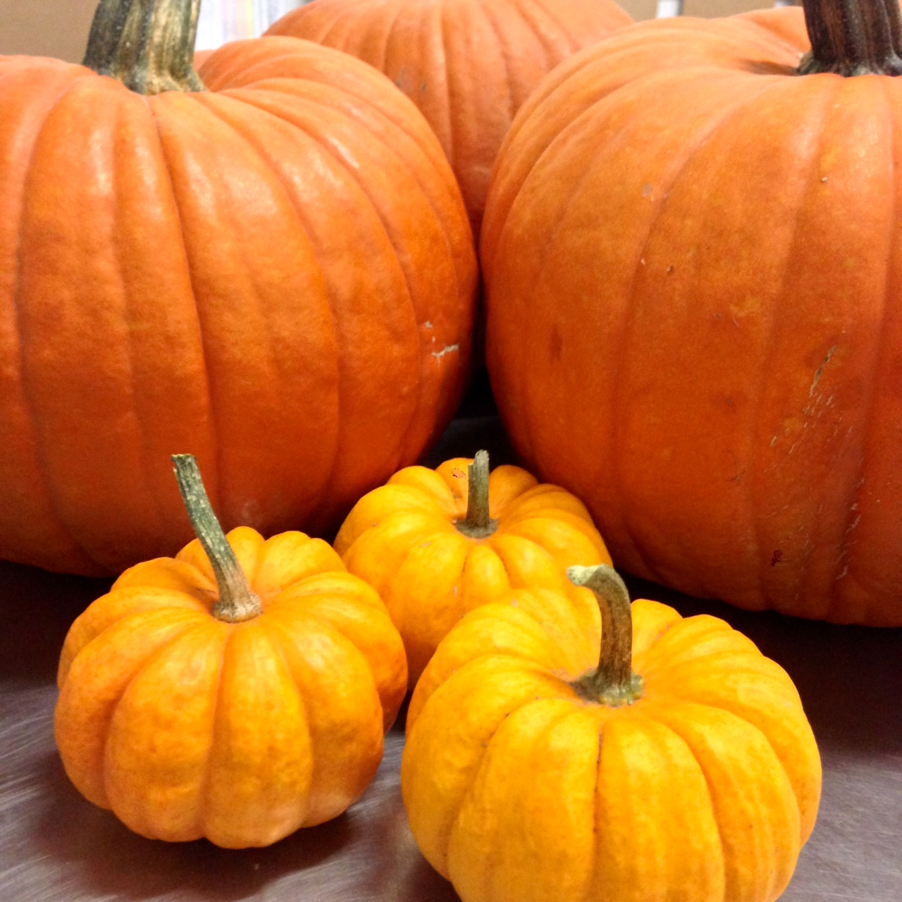 Roasted Pumpkin Seeds (Recipe)