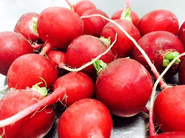 Radish - Red - .5lb - Pioneer Gardens