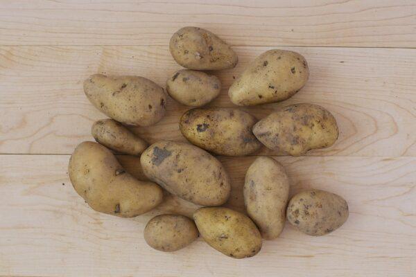Potatoes - Fingerling DUPLICATE