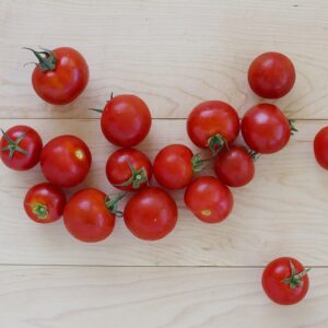 Tomatoes - Cocktail - Floating Gardens